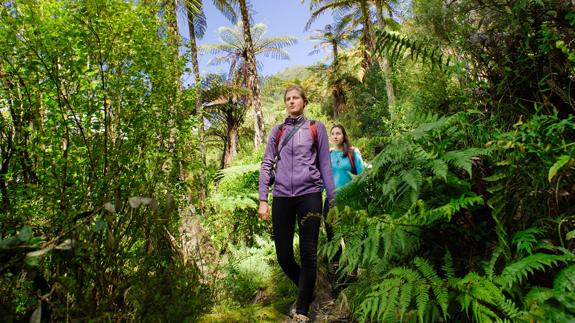 Walking and hiking in the Lake Tarawera area
