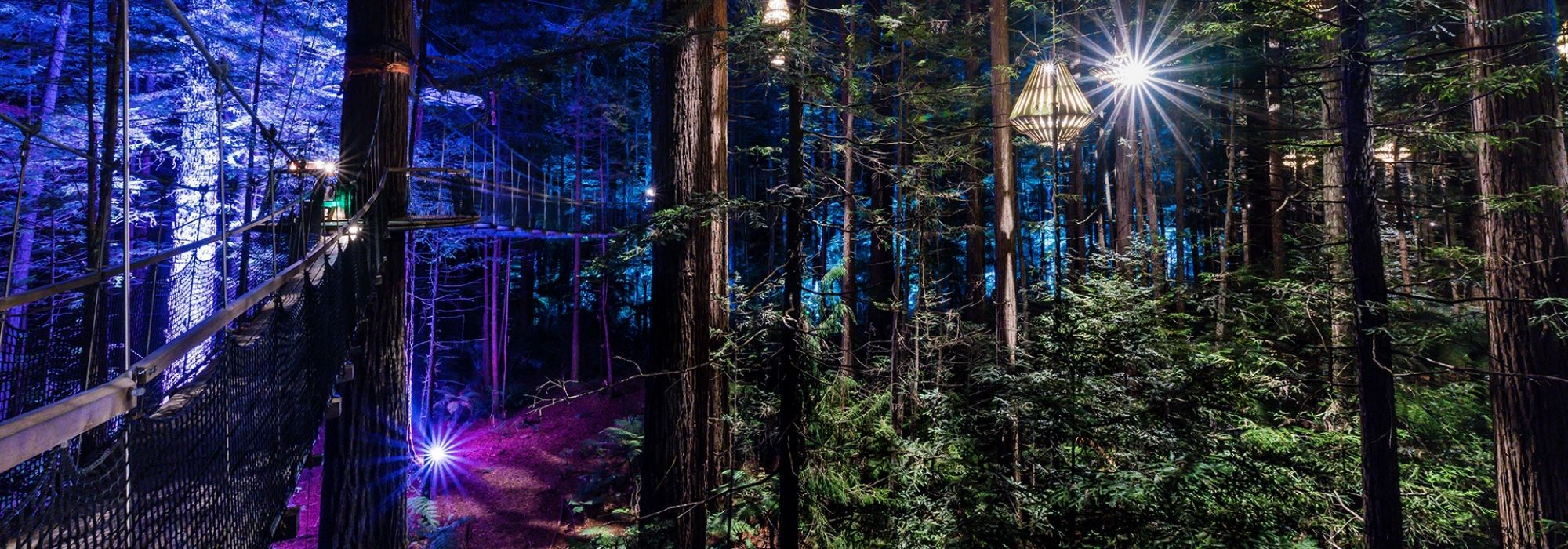 Lonely Planet names Redwoods Nightlights number 2 in the world